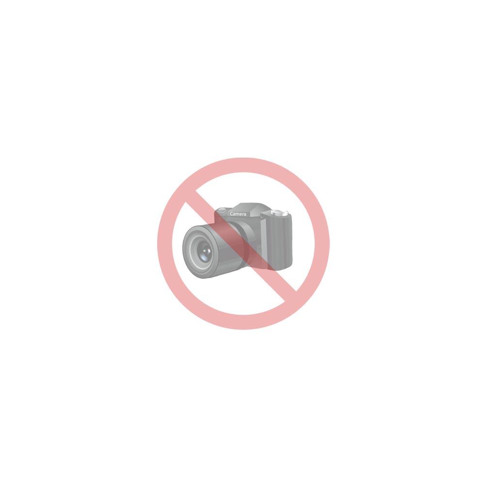Ergo Silver 454 Endkappe